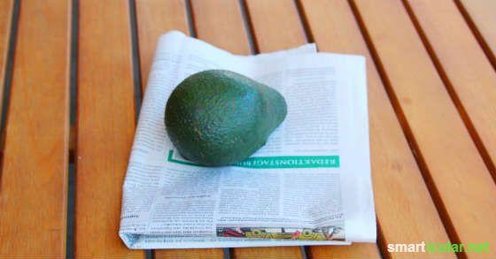 Avocados reifen schneller in Zeitungspapier