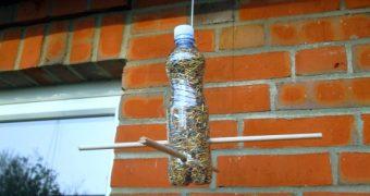 Futterstelle für Vögel aus PET Flasche basteln