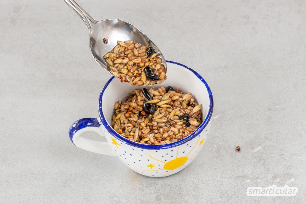 Vogelfutter selber zu machen, ist nicht schwierig, und du kannst dafür zahlreiche Dinge upcyceln. Hier findest du die besten Ideen für DIY-Fettfutter!