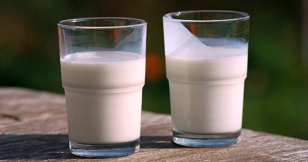 Dinkelmilch ist gesund und lecker. Im Bioladen ist es allerdings um einiges teurer als herkömmliche Milch. Wir zeigen dir, wie du sie günstig selber herstellst!
