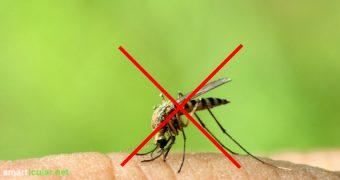 Natürliche Insektenabwehr ist nicht so leicht. Wir haben dutzende Mittel und berüchtigte Lifehacks getestet! Diese 9 Methoden halten dir Mücken vom Leib!