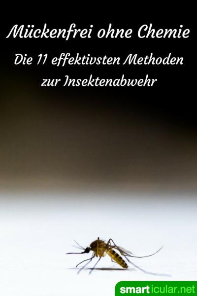 Bestes Mittel Gegen Mücken : m ckenfrei ohne chemie die 11 effektivsten methoden zur insektenabwehr ~ Whattoseeinmadrid.com Haus und Dekorationen