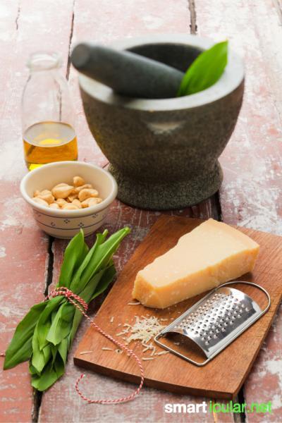 Mit Bärlauch zauberst du leckere und gesunde Gerichte. Gesammelt oder selbst angebaut, ist Bärlauch eine günstige Zugabe zu deinen Speisen.