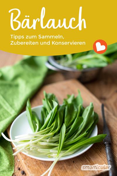 Bärlauch gehört zu den regionalen Superfoods! Hier findest du die wichtigsten Sammeltipps sowie einfache und leckere Rezepte und erfährst, wie sich das Wildkraut das ganze Jahr über genießen lässt.