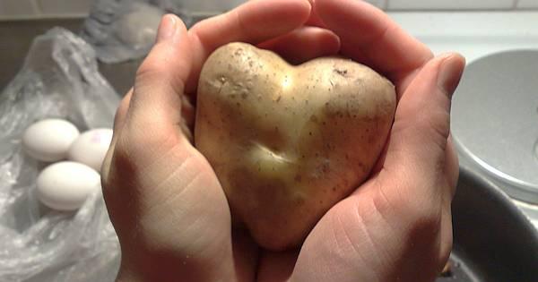 Eines der beliebtesten Grundnahrungsmittel hält noch einige Überraschungen parat. Hier findest du die top Tricks für Kartoffeln und Kartoffelschalen