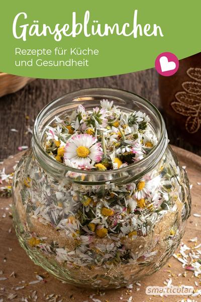 Das Gänseblümchen ist nicht nur hübsch anzusehen, sondern auch eine starke Heilpflanze! Die besten Rezepte für die Gesundheit und die Küche findest du hier.