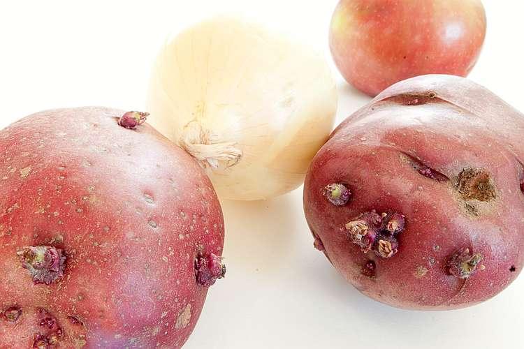 Aus diesen Küchenresten züchtest du ohne viel Aufwand neue Pflanzen und oft gesunde, reichhaltige Lebensmittel!