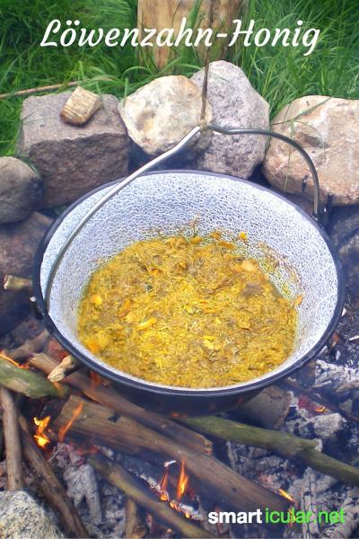 Aus Löwenzahn Speisen zaubern: vom Honig bis zum Salat ist viel möglich. Hier erfährst du, wie du Sirup herstellst und als Salatdressing verwendest!