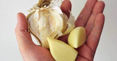 Knoblauch ist nicht nur im Essen beliebt, sondern auch ein wahres Wundermittel der Gesundheit. Verwende ihn gegen Herpes, Pickel, Warzen und vieles mehr!