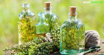Kräuteressige musst du nicht teuer kaufen. Stattdessen kannst du die Kräuter aus Garten, Wald und der Wiese nutzen und leckere und gesunde Essige herstellen