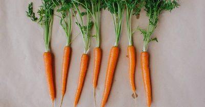 Frisches Gemüse wird schnell welk? Statt schlappe Salate, Gurken, Radieschen oder Mohrrüben wegzuwerfen, frische sie mit diesem natürlichen Trick auf!
