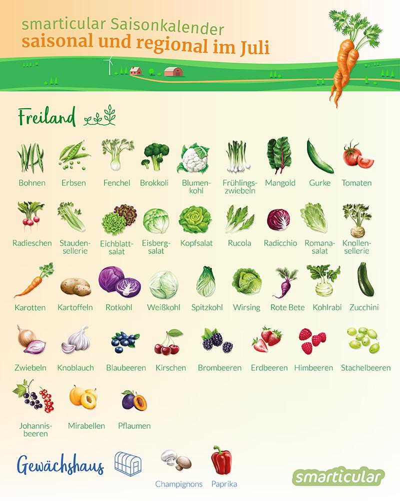 Regional und saisonal zu essen, ist gut für die Gesundheit und Umwelt und spart Geld. Welches Obst und Gemüse hat im Juli Saison?