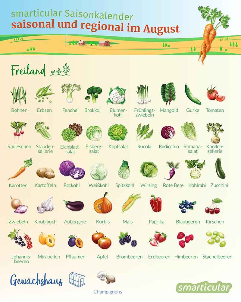Saisonkalender August Regionales Obst Und Gemüse Kaufen