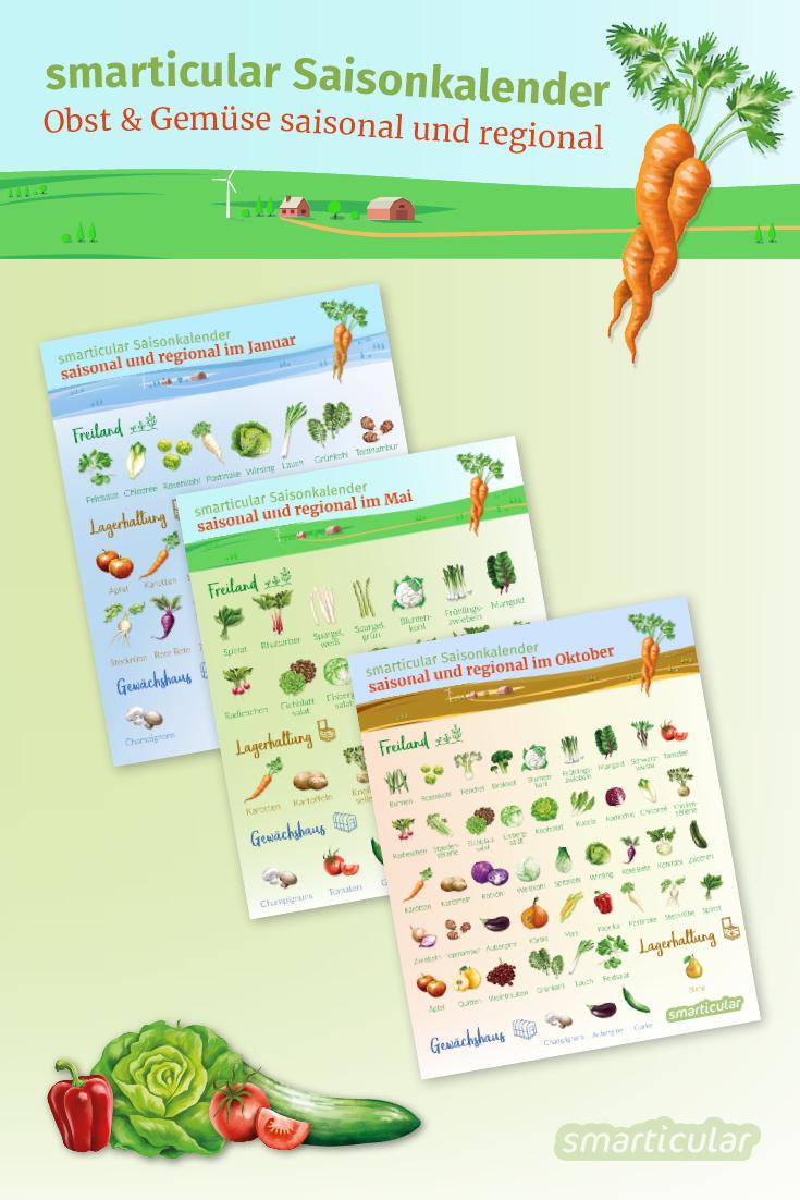 Saisonkalender Gemüse Und Obst Saisonal Und Regional Einkaufen