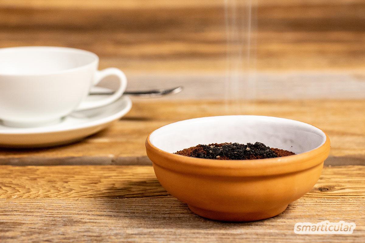 Beim Frühstück oder Kaffeekränzchen im Freien wird man immer wieder von Wespen gestört. Mit diesen Tricks vertreibst du die lästigen Insekten, ohne ihnen zu schaden.