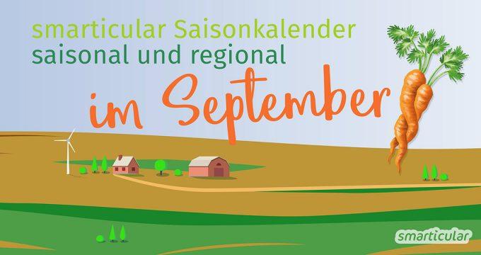 Der Sommer neigt sich dem Ende und die Apfel- und Birnenernte kommt in Schwung. Aber welche anderen regionalen, gesunden Obst- & Gemüsesorten gibt es jetzt?