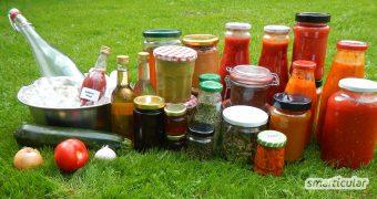 Lebensmittel sind kostbar und sollten nicht verschwendet werden. Hier findest du viele Möglichkeiten, sie länger zu nutzen und ihre Vitalstoffe zu erhalten!