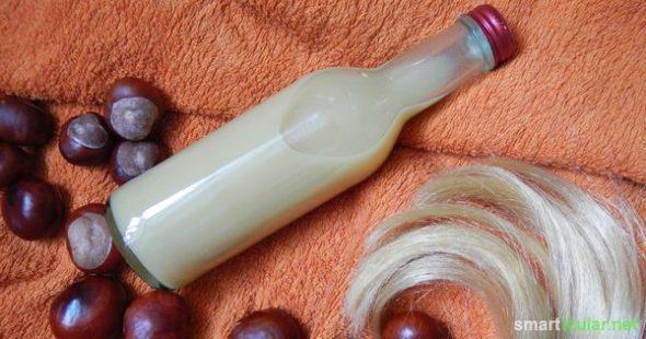 Rosskastanien sind vollgepackt mit Wirkstoffen, die reinigen und heilend wirken können. Mit diesem Rezept kochst du ein natürliches Shampoo aus Kastanien.