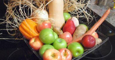 Es wird kälter und feuchter, die Natur hält aber noch einige Früchte und Gemüse für uns bereit. Finder heraus, was im November regional und saisonal reift.