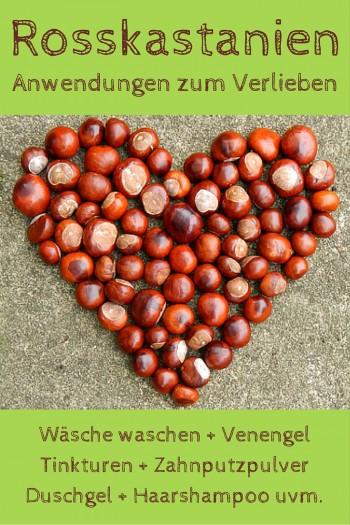 12 Kastanien-Anwendungen zum Verlieben