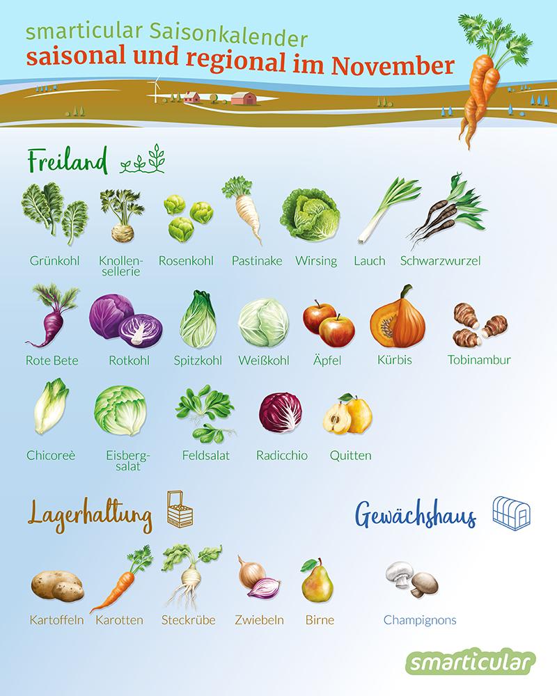 Was Reift Wann Regionales Obst Und Gemüse Im November