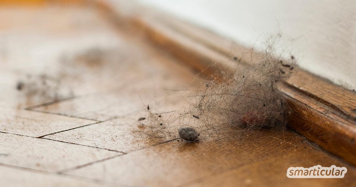 Hausstaub ist lästig und störend, besonders für Allergiker. Mit diesen Tricks kannst du Staub nachhaltig reduzieren und das Aufräumen erleichtern.