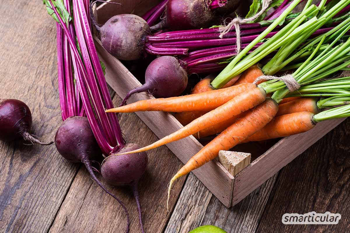 Der Saisonkalender Dezember verrät dir, welche regionalen Obst- und Gemüsesorten jetzt reif sind -  zum Beispiel Äpfel, Nüsse und Beeren sowie Rosenkohl, Rote Bete und Rotkohl.