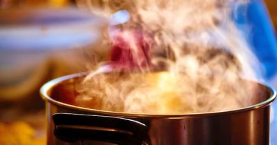 Mit dem Kochsack lassen sich viele Speisen bequem und energiesparend kochen. Oft sind sie auch gesünder und schmecken besser.