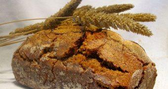 Das Backen eines Sauerteigbrotes lohnt sich, du wirst mit unvergleichlichem Geschmack und hohem Nährwert belohnt.