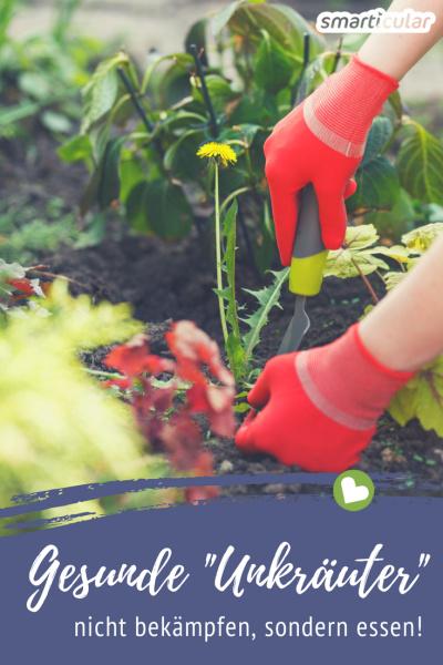 """Über die meisten """"Unkräuter"""" solltet man sich nicht ärgern, oft sind sie viel gesünder als angebautes Gemüse. Finde heraus, wie du sie nutzen kannst!"""