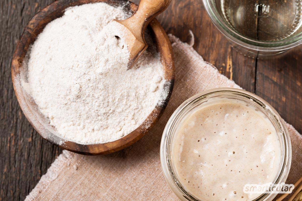 Sauerteig ansetzen ist gar nicht schwer - du brauchst  nur Mehl und Wasser, um das Anstellgut für Sauerteigbrot und -brötchen selber herzustellen und immer wieder zu verwenden.