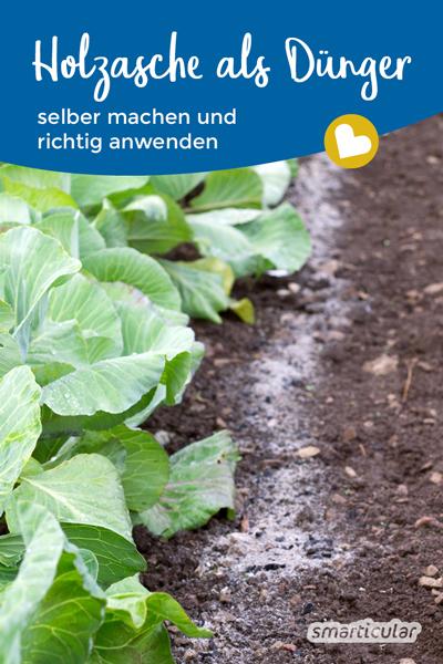 Asche als Dünger versorgt Gartenpflanzen mit Nährstoffen. Hier erfährst du, wie ein Holzasche-Dünger hergestellt wird und welche Pflanzen davon profitieren.