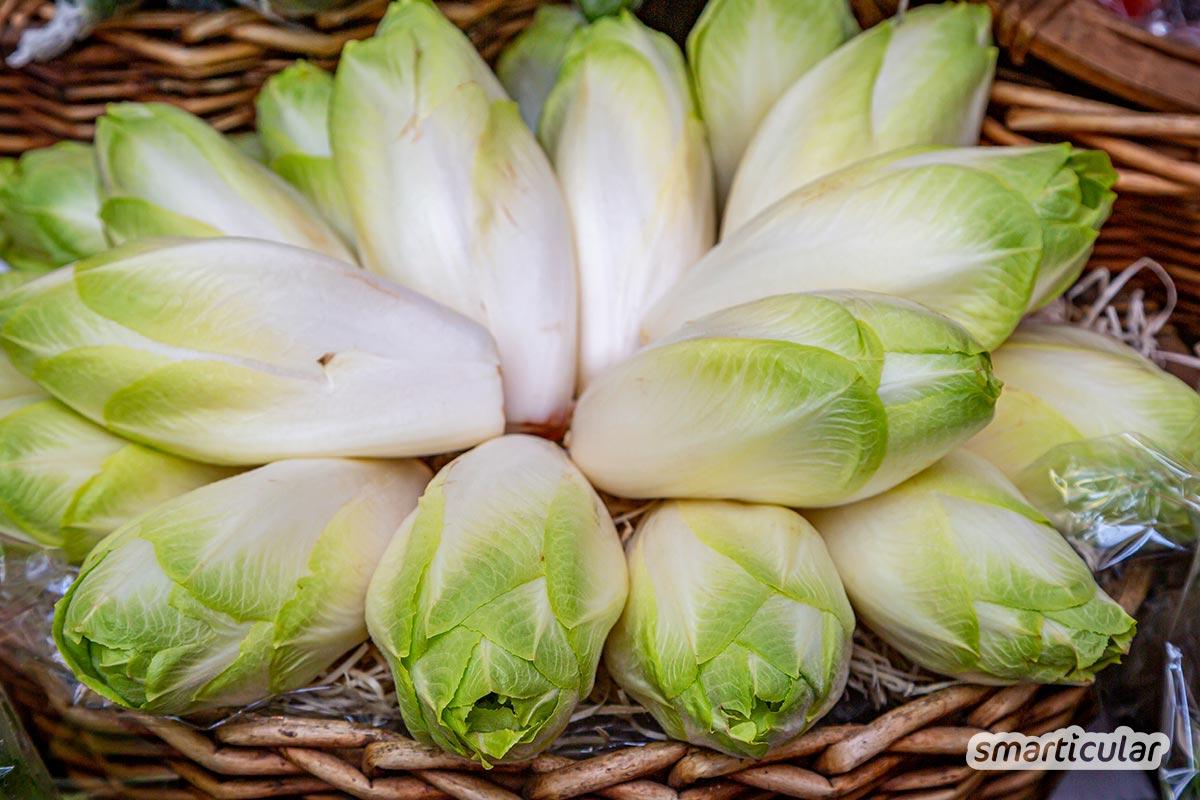 Der Saisonkalender März verrät dir, welche regionalen Obst- und Gemüsesorten jetzt reif sind -  zum Beispiel Rosenkohl und Topinambur sowie Äpfel, Bärlauch und Brennnesseln.