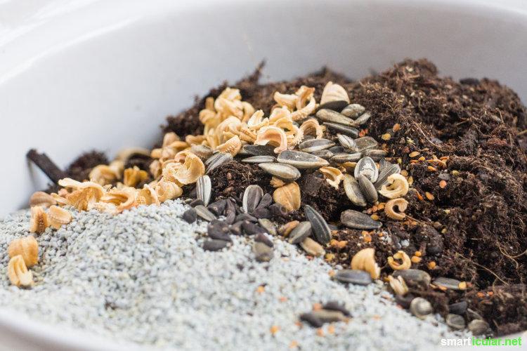 Mit Seed Bombs kannst du karge Flecken in deinem Umfeld zum Erblühen bringen und Bienen und anderen Insekten eine Oase schaffen. So stellst du sie her.