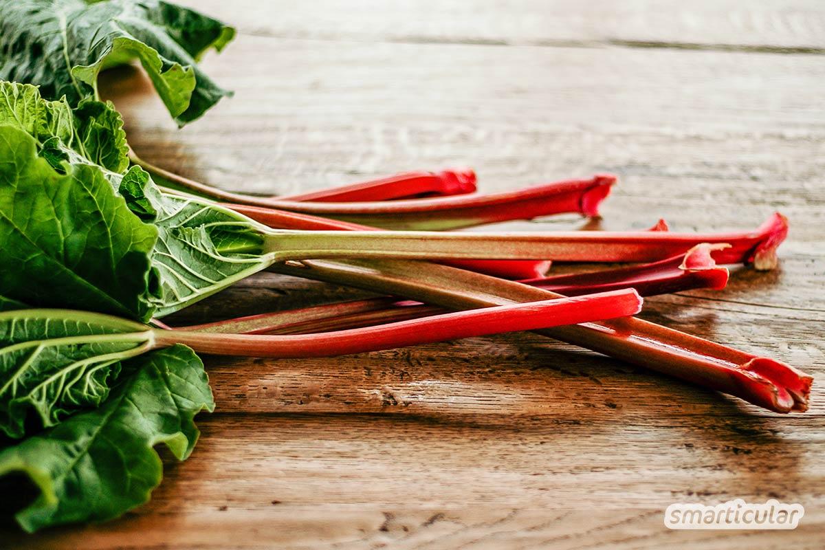Der Saisonkalender April verrät dir, welche regionalen Obst- und Gemüsesorten jetzt reif sind -  zum Beispiel grüner und weißer Spargel sowie Rhabarber.