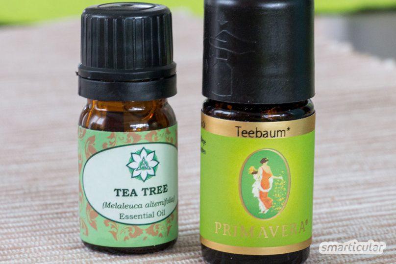 Mit natürlichen Zutaten kannst du leicht, schnell und sehr preiswert dein eigenes Deo herstellen. Dein eigenes Deodorant ganz nach deinem Geschmack!