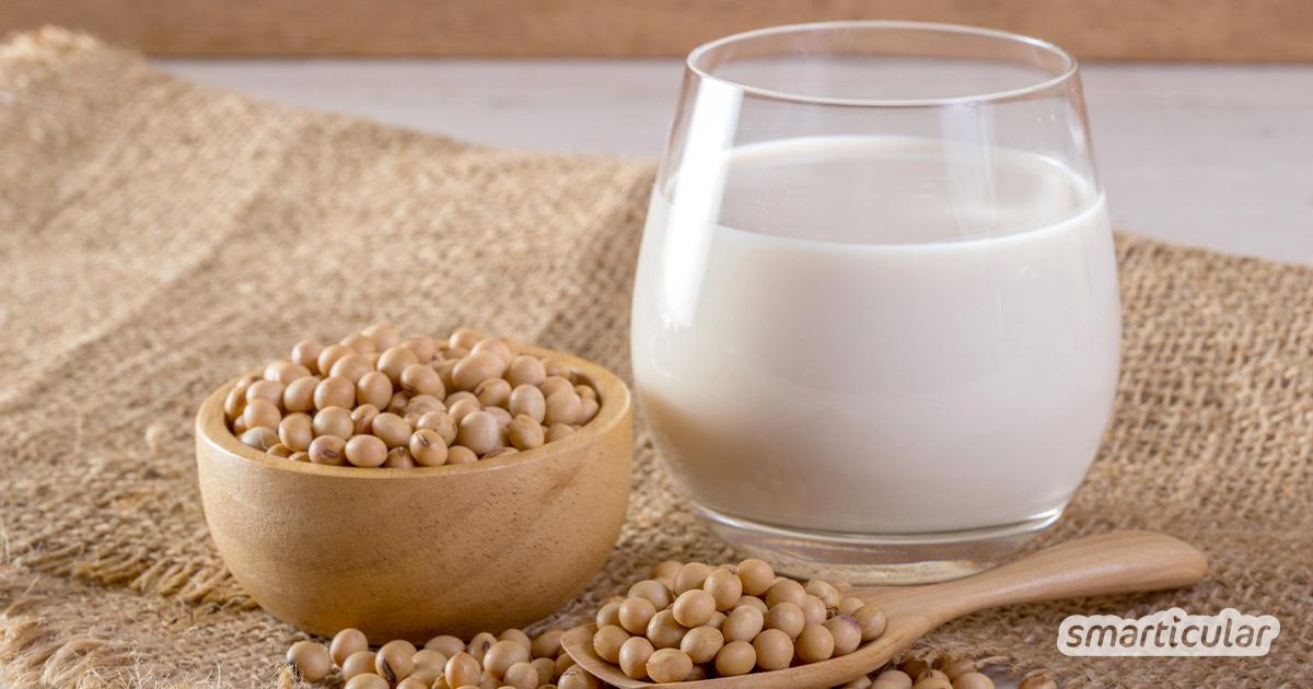 Statt die weit verbreitete Milchalternative teuer zu kaufen, kannst du aus getrockneten Bohnen leicht Sojamilch selber machen. Hier gibt's das beste Rezept!