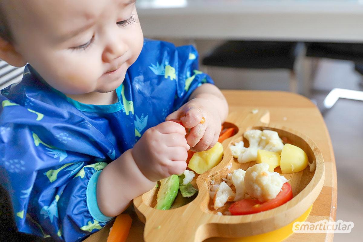 Dein Baby tut sich schwer mit herkömmlichem Brei? Überlasse doch einmal deinem Kind die Wahl, was es essen möchte. So lernt es schnell und selbstbestimmt!
