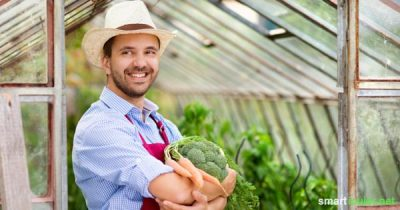 Regionales Obst und Gemüse direkt vom Bauern! Geht nicht in der Großstadt? Diese Initiativen beweisen das Gegenteil.