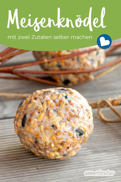 Meisenknödel selber machen ohne Netz: So einfach stellst du nahrhaftes Fettfutter für heimische Singvögel her.