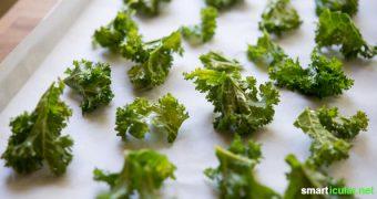 Mit Grünkohl kommst du gesund durch die Wintermonate! Hier erfährst du alles über seine gesundheitlichen Potenziale und findest leckere Rezepte.