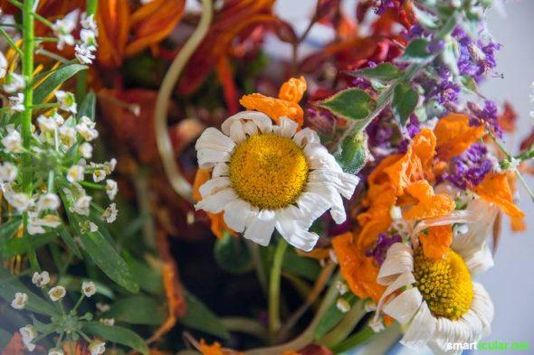 Lange Freude an Blumengeschenken: Mit diesen Tipps kannst du die Lebensdauer von Schnittblumen steigern und ein natürliches Frischhaltemittel herstellen.