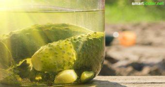 Wenn du das nächste Mal ein Glas Gurken öffnest, dann gieße den Fond nicht weg! Du kannst ihn für die Gesundheit und zur Zubereitung vieler Speisen weiterverwenden