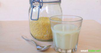 Hirsemilch ist ein laktose- und glutenfreier Pflanzendrink und bietet leckere Abwechslung zu Soja- und Reismilch. Mach sie selbst und spare Geld und Müll!