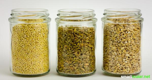 9 Reis Alternativen Für Eine Gesunde Und Vitalstoffreiche Ernährung