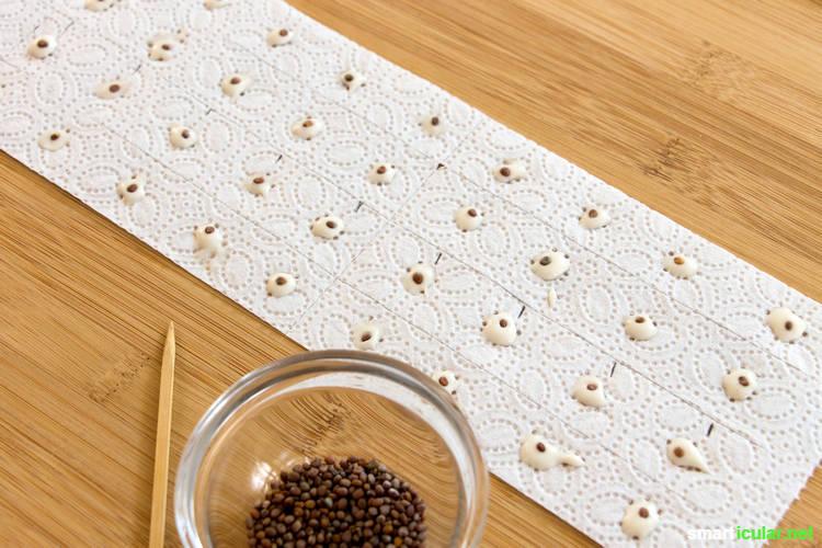 saatb nder und saatscheiben selbst herstellen mit mehlkleber. Black Bedroom Furniture Sets. Home Design Ideas