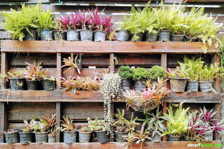 Beliebt Vertikales Gärtnern - Tipps und Ideen für den Balkon KU03