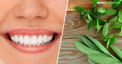 Zahnfleischprobleme sind nicht nur schmerzhaft, sondern können auch zu Folgeschäden an den Zähnen führen. Mit diesen einfachen und natürlichen Tipps bleibt das Zahnfleisch gesund und stark.
