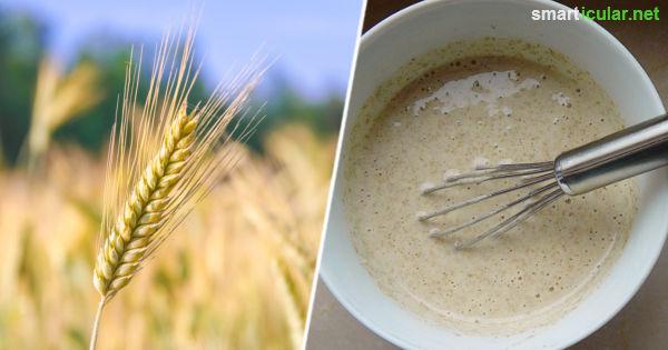 Der regionale Roggen schmeckt aromatischer als Weizen und ist auch noch bekömmlicher. In ihm aber noch viel mehr - zum Beispiel eine natürliche Shampoo-Alternative!