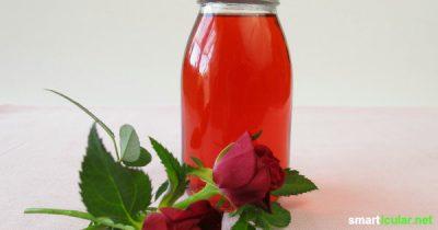 Rosenblütensirup ist eine köstliche Erinnerung an den Sommer. Wie der Sirup für Tee und Süßspeisen zubereitet wird und das ganze Jahr hält, erfährst du hier